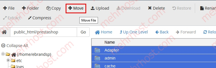 MoveFile
